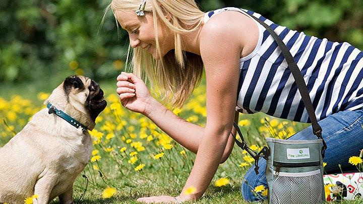 paw-lifestyles-dog-treat-pouch