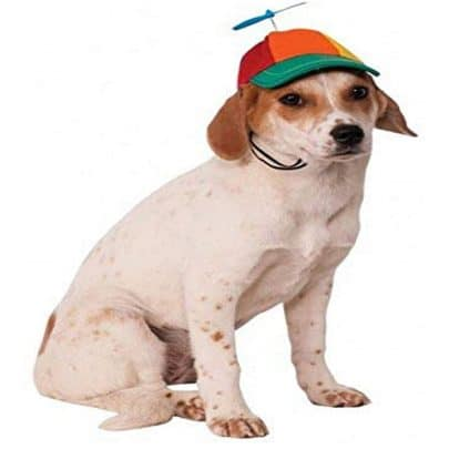 rubies-propeller-hat-for-dogs