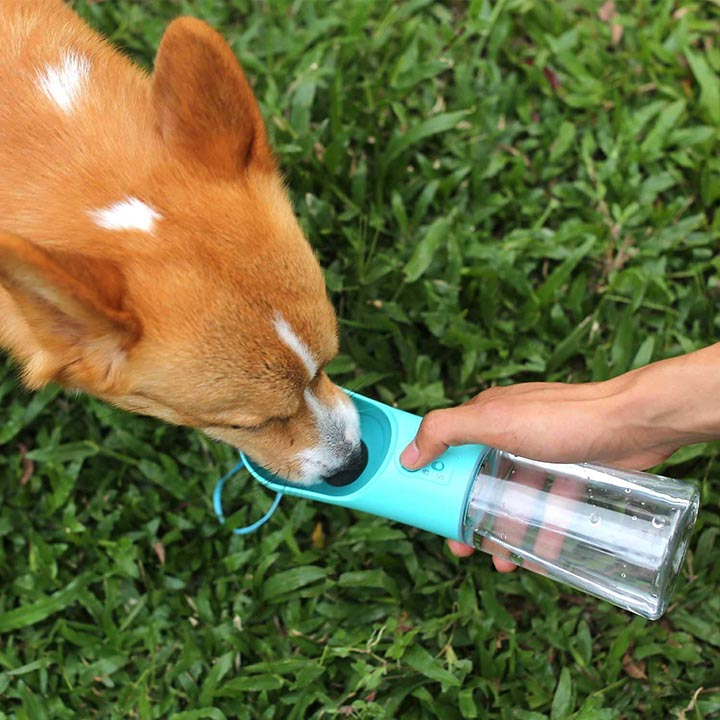 upsky-dog-water-bottle
