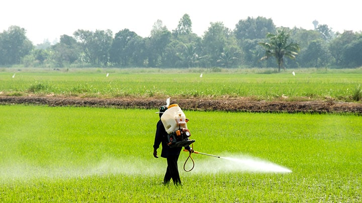 chemicals-in-water-runoff-from-crops