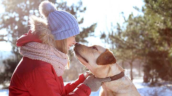 winter-dog-walking-gloves