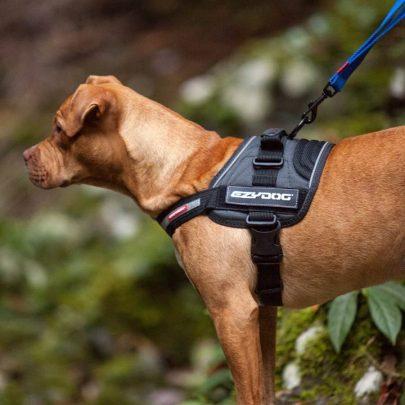 ezydog-convert-trail-ready-dog-harness