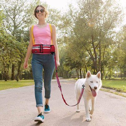 kruz-hands-free-dog-leash