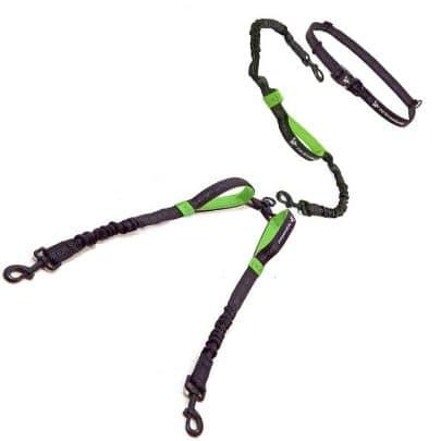 pet-dreamland-hands-free-double-dog-leash